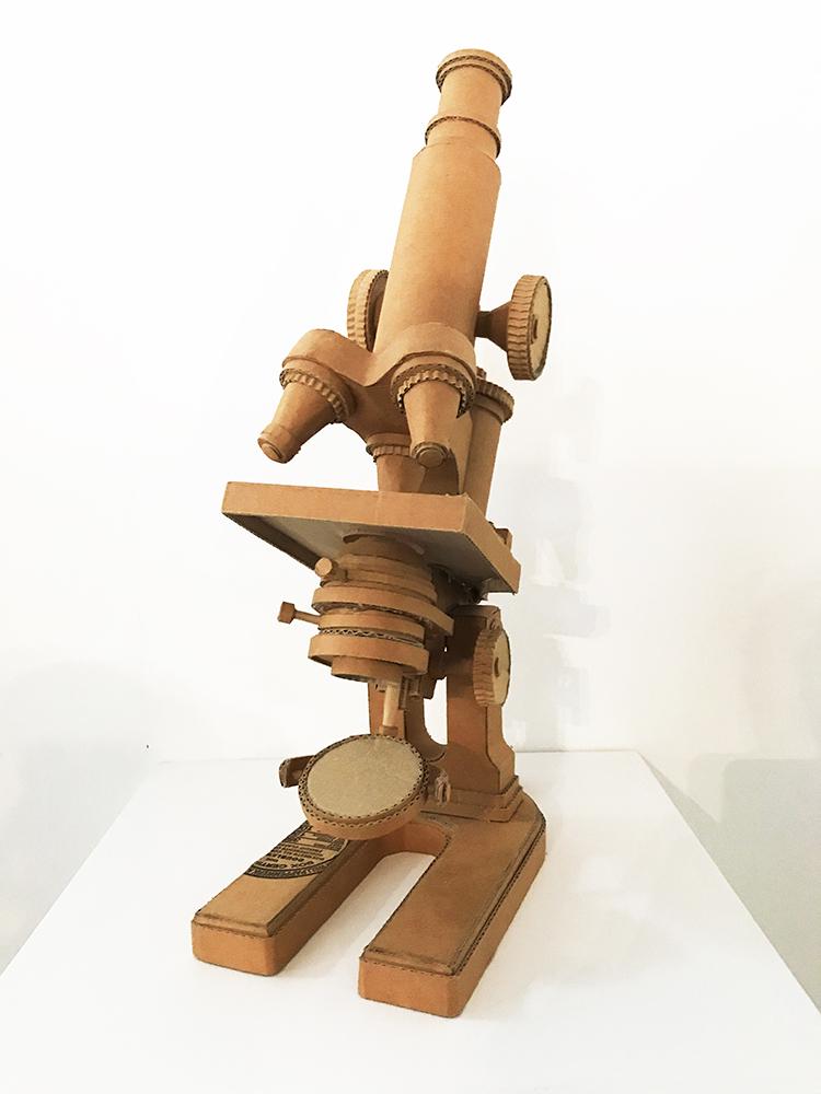 Microscopio, 2011 (Microscope)